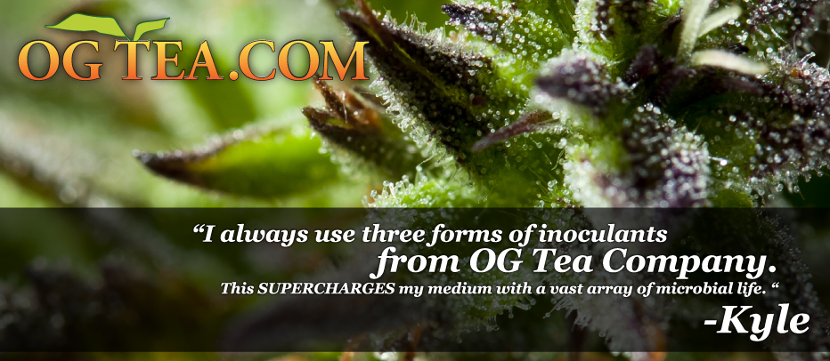 Best Microbial Inoculants for Marijuana Cannabis Plants - OG Tea Company