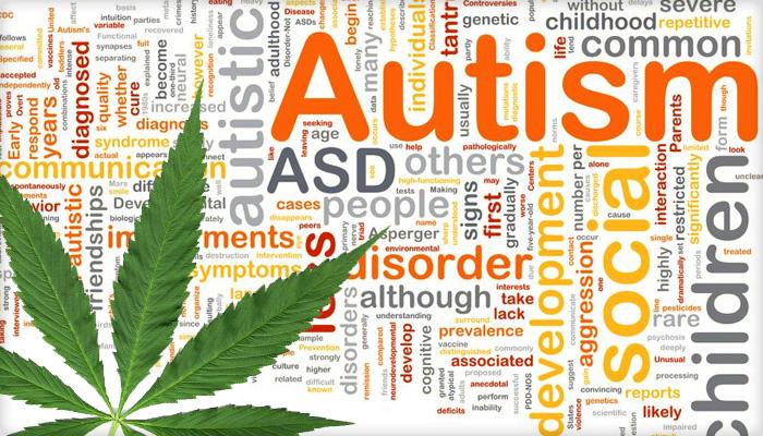 autismSLIDE