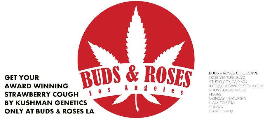 logo_budsand-roses-slider